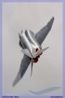 2013-wittmund-phantom-pharewell-day-2-095-jpg