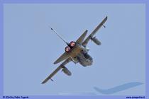 2014-Decimomannu-Spotter-Tiger-040