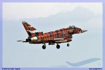 2014-Decimomannu-Spotter-Tiger-053