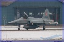 2015-WEF-Meiringen-22-gennaio-007