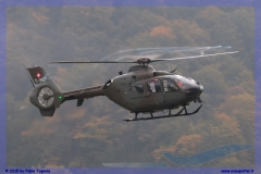2015-meiringen-axalp-hornet-puma-005
