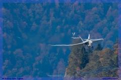 2015-meiringen-axalp-hornet-puma-149