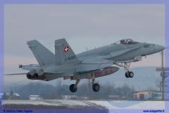 2016-Payerne-WEF-F18-F5-Hornet-Tiger-009