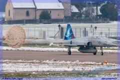 2016-Payerne-WEF-F18-F5-Hornet-Tiger-020