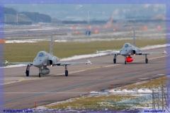 2016-Payerne-WEF-F18-F5-Hornet-Tiger-028