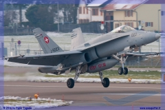 2016-Payerne-WEF-F18-F5-Hornet-Tiger-030