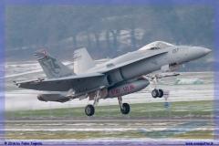 2016-Payerne-WEF-F18-F5-Hornet-Tiger-033
