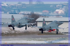 2016-Payerne-WEF-F18-F5-Hornet-Tiger-042