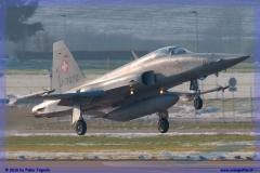 2016-Payerne-WEF-F18-F5-Hornet-Tiger-043
