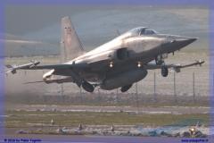 2016-Payerne-WEF-F18-F5-Hornet-Tiger-050