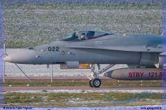 2016-Payerne-WEF-F18-F5-Hornet-Tiger-052