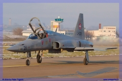 2016-Payerne-WEF-F18-F5-Hornet-Tiger-058