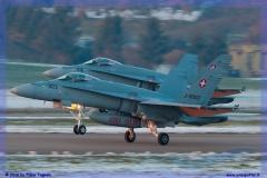 2016-Payerne-WEF-F18-F5-Hornet-Tiger-072