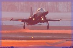 2016-Payerne-WEF-F18-F5-Hornet-Tiger-074