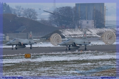 2016-Payerne-WEF-F18-F5-Hornet-Tiger-080