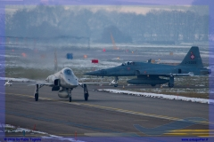 2016-Payerne-WEF-F18-F5-Hornet-Tiger-082