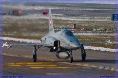 2016-Payerne-WEF-F18-F5-Hornet-Tiger-107