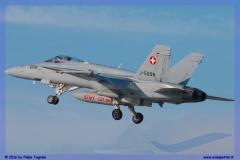 2016-Payerne-WEF-F18-F5-Hornet-Tiger-116
