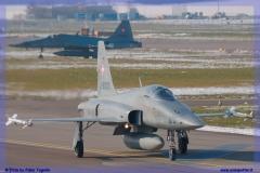 2016-Payerne-WEF-F18-F5-Hornet-Tiger-121