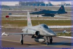2016-Payerne-WEF-F18-F5-Hornet-Tiger-122