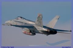2016-Payerne-WEF-F18-F5-Hornet-Tiger-133