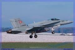 2016-Payerne-WEF-F18-F5-Hornet-Tiger-143