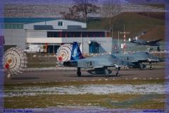 2016-Payerne-WEF-F18-F5-Hornet-Tiger-151