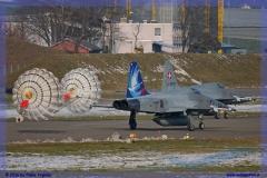 2016-Payerne-WEF-F18-F5-Hornet-Tiger-152