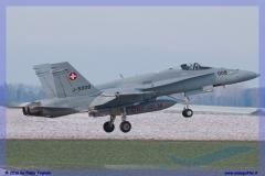 2016-Payerne-WEF-F18-F5-Hornet-Tiger-156