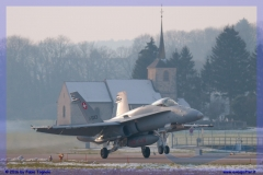 2016-Payerne-WEF-F18-F5-Hornet-Tiger-164
