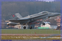 2016-Payerne-WEF-F18-F5-Hornet-Tiger-165