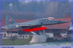 2016-Payerne-WEF-F18-F5-Hornet-Tiger-179