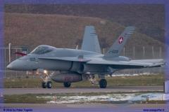 2016-Payerne-WEF-F18-F5-Hornet-Tiger-183