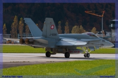 2016-meiringen-f-18-5-hornet-tiger-night-flight-006