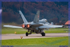 2016-meiringen-f-18-5-hornet-tiger-night-flight-009