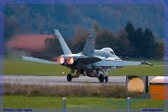 2016-meiringen-f-18-5-hornet-tiger-night-flight-051