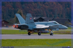 2016-meiringen-f-18-5-hornet-tiger-night-flight-052