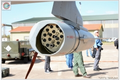 2017-decimomannu-Tornado-RAF-Serpentex-033