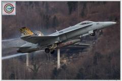 2018-meiringen-wef-f-18-hornet-tiger-003