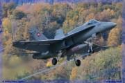 2015-Meiringen-Axalp-Hornet-Puma-048