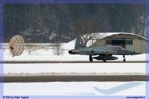 2013-meiringen-wef-055