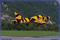 mollis-zigermeet-airshow-038-jpg