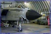 2008-festa-repubblica-piacenza-tornado-f-16-ecr-special-color-002