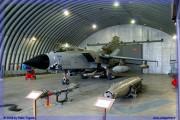 2008-festa-repubblica-piacenza-tornado-f-16-ecr-special-color-003