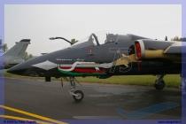 2005-rivolto-air-show-45-frecce-tricolori-045