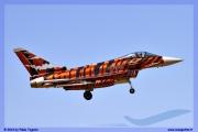 2014-Decimomannu-Spotter-Tiger-018