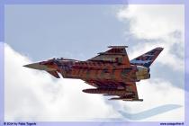 2014-Decimomannu-Spotter-Tiger-038