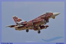 2014-Decimomannu-Spotter-Tiger-049