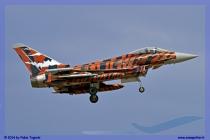 2014-Decimomannu-Spotter-Tiger-051
