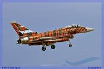2014-Decimomannu-Spotter-Tiger-052